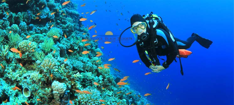 Scuba Diving at Havelock Island